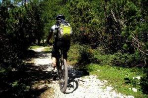 rowerzysta na szlaku